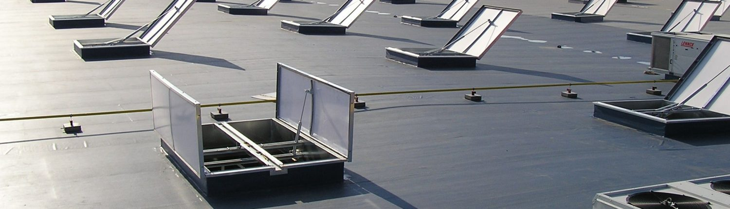Thermadome Double leaf roofscape